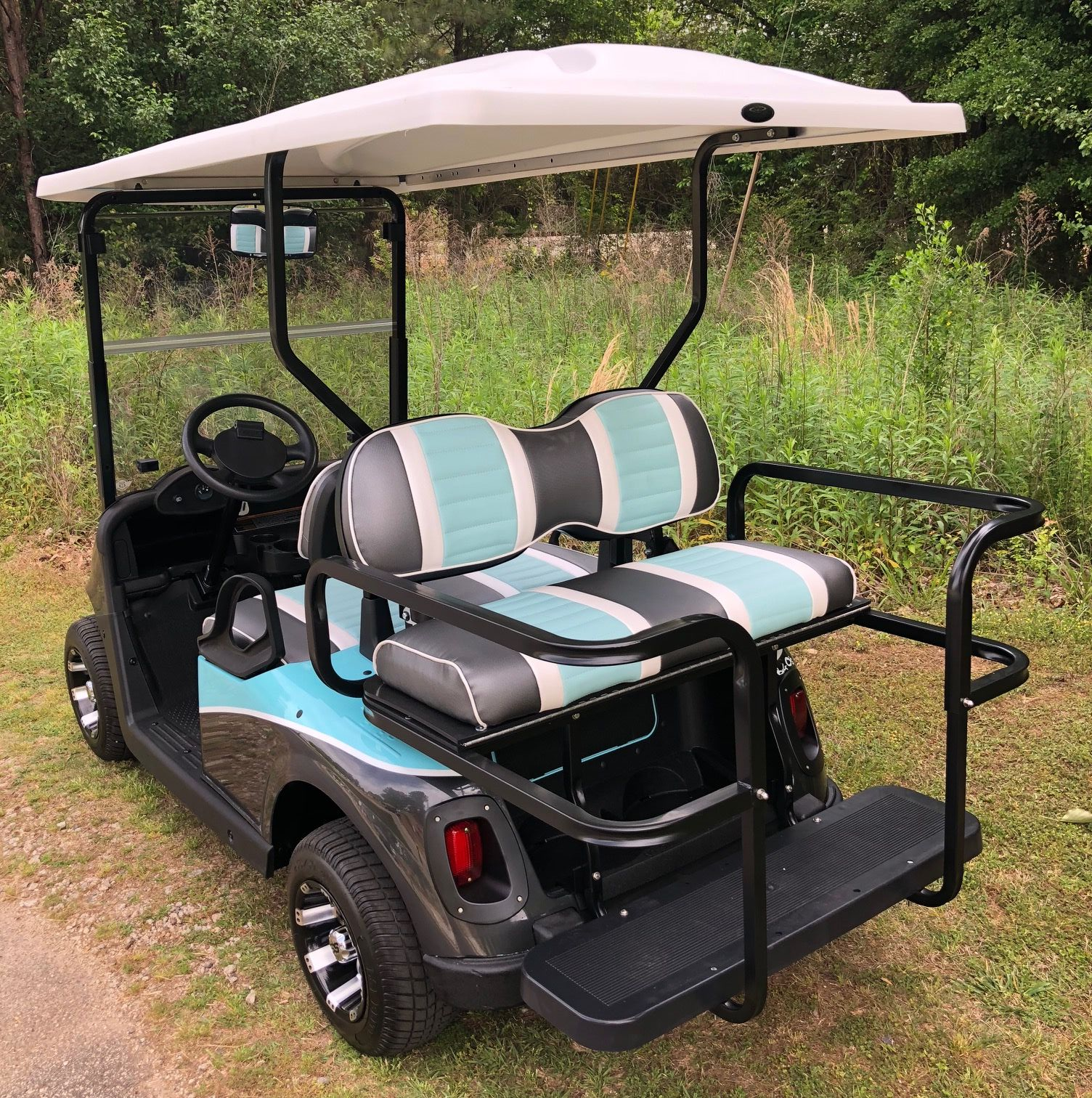 Premium Plus Package EZGO RXV